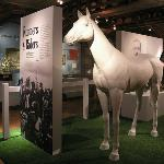 Runners and Riders exhibition