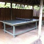Le pingpong (plein air)