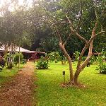vista del jardin y la recepción