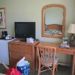 Dresser, TV and fridge