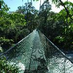 The bridge across the Sarapiqui-river at Tirimbina Eco Reserve