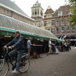 harinkje happen aan oude vishal Delft