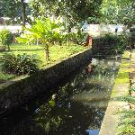Canal passing thru Homestay