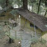 La cabane familiale