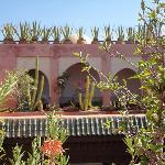 Sur la terrasse du riad, joliment décorée de plantes grasses et cactus