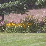 Garden at the Lodge
