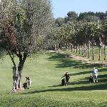 Golfplatz Rotana immer wieder anders