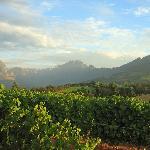 Go Cape - Day Tours
