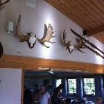 Trophies in the Dinning room