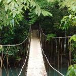 Bridge Aguitas