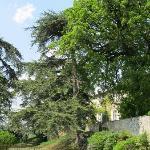Photo de Chateau de Lassalle