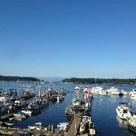 View from 6th floor - Nanaimo Harbour