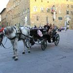 horse & carriage rides outside the hotel