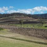 View from Ivanhoe Wines