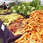PSU Farmers Market near by