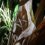 netcasting spider