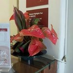 Florals by the front desk.