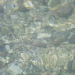 It was past 11 am when we got there.The water was clear enough to see small fishes.