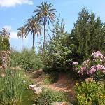botanic soller