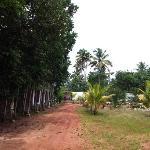 Road to Resort