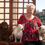 Sue and her lovely dogs