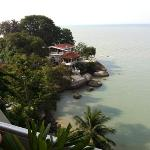 プールサイドから見た景色