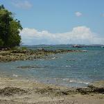 Ilha de Frades