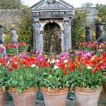 Just a few of the tulips on display