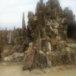 tons of petrified wood. all local