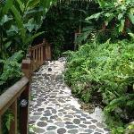 Beautiful Pathways throughout the property