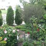 The Garden outside The Retreat