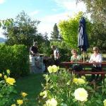Guests enjoy a barbecue in the garden