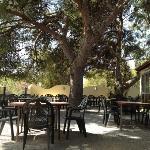 Restaurante Mallol