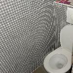 veel te kleine ruimte voor toilet