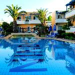 Ninemia's Pool...