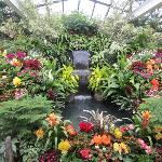 Hermosa fuente con agua y flores