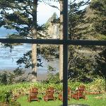 View from the side window of the Sea Rose room.