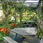 Enjoy a cream tea here on summer Sunday afternoons