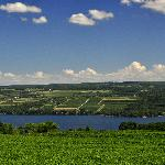 If this isn't paradise, we don't know what is! Overlooking our vineyards and Seneca Lake