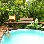 Swimmingpool within the jungle / Piscina en la selva