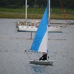 Pico sailing