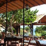 Vista desde el interior del restaurant hacia la terraza