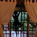 yoga from the balcony