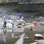 Creek near falls