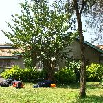 Photo de Sakina campsite