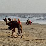 Versoli Beach