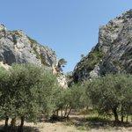 L'entrée des Gorges du Régalon à Mérindol / Cheval Blanc