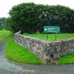 Bonamargy Friary Ruins