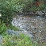 peaceful creek along back of property