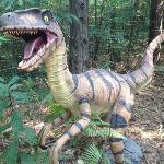 dinosaure du parcours dino !